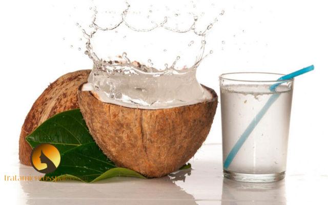 agua de coco para combatir el dengue