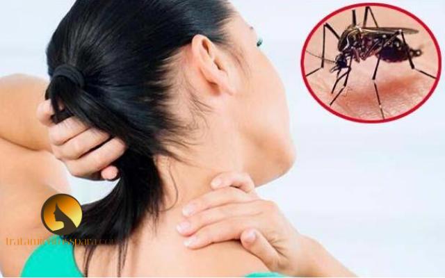 como tratar el dengue